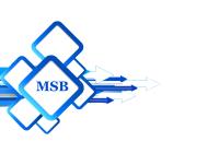 MSB-IT